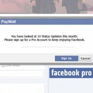 Facebook Pro: What you need to know about the paywall